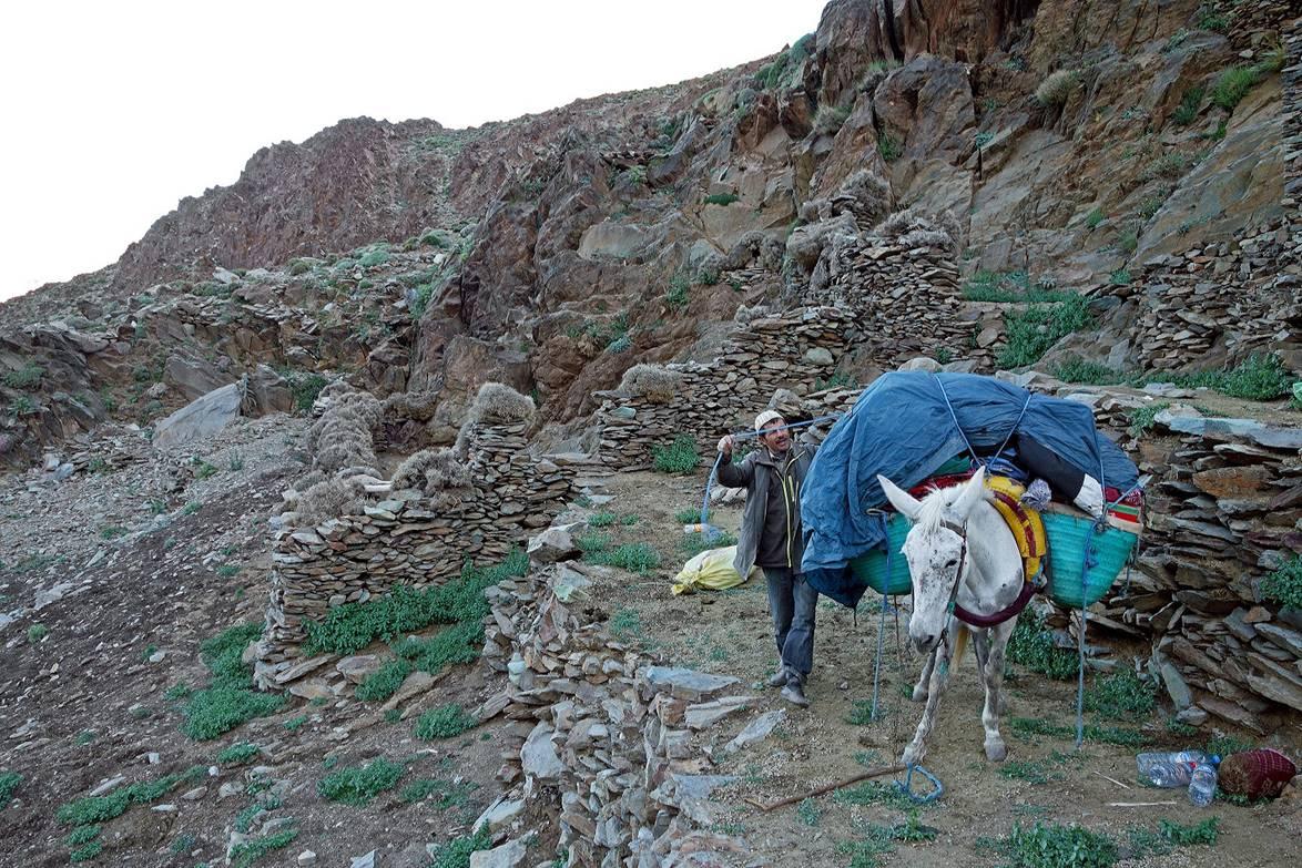 Morocco 2016 for 16 camp terrace albany ny